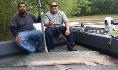 Happy Alligator Gar Angeling Clients